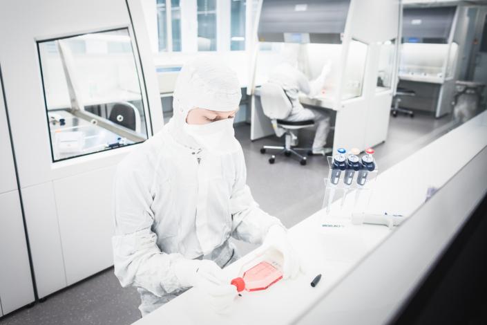 Foto aus dem IOZK Labor